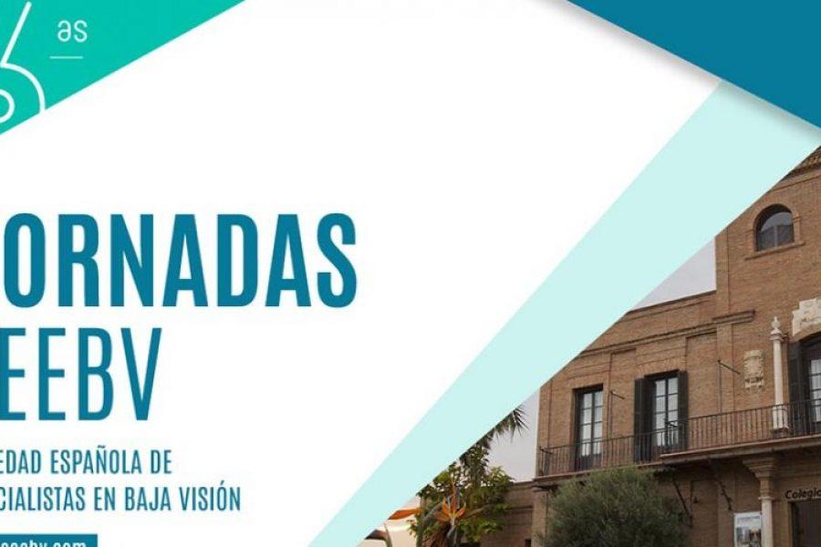 Las VI Jornadas de baja visión y rehabilitación visual de la SEEBV se celebrarán en octubre